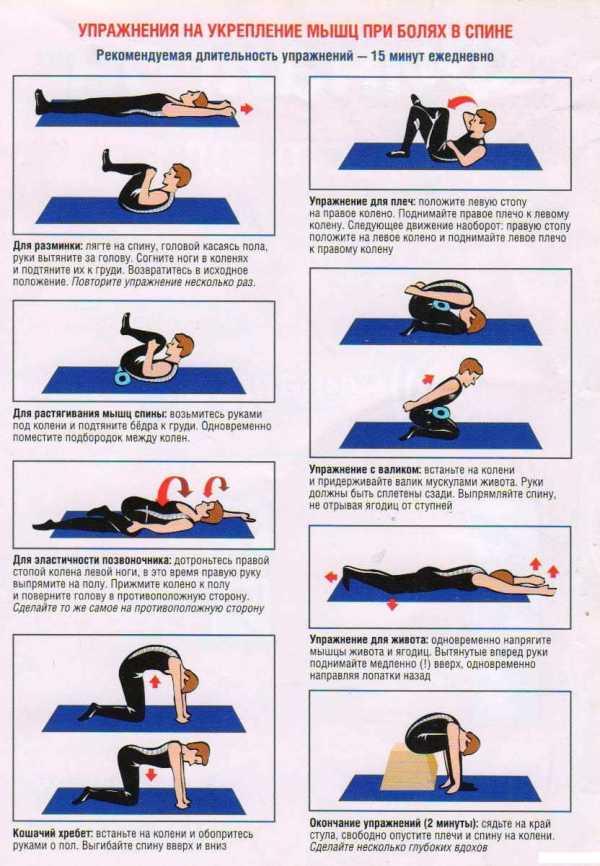 неприхотливости комплекс упражнений с картинками для мышц живота картинки это полезная